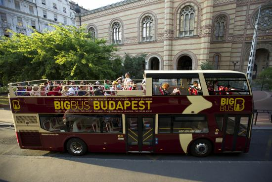 20 % off  BIG BUS Hop On Hop Off